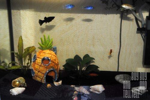 Домик для аквариума - Кто проживает на дне океана?